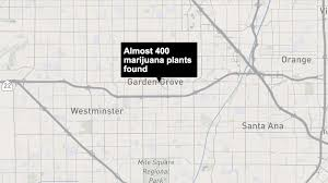 police find almost 400 plants in a garden grove fire