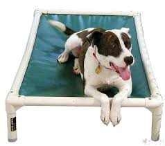 contemporary chew resistant dog bed the chew proof dog bed looks stylish in its almond colour contemporary chew resistant dog bed