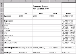 examples of personal budgets 9 personal budget example monthly budget forms