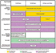 Vaccination Chart From Birth To 10 Years The 2004 Recommended Adult Immunization Schedule Practice