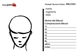 Super Parrucchiere Scheda Tecnica Blend Con Easyblender Gratuita
