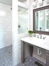 Ada Bathroom Design Ideas Unique Design