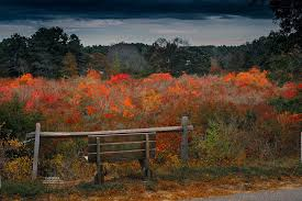 Cape Cod Weather Channel  Home Design InspirationsWeather Cape Cod October
