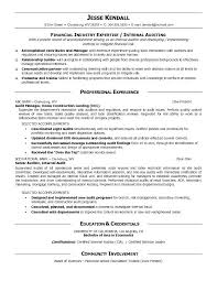 Internal Resumes Sample Resume Auditor Accountant Audit Examples Newest Professional