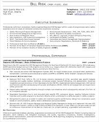 A Summary For A Resumes Resume Executive Summary Example Magdalene Project Org
