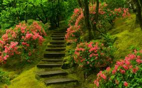 Small Picture 10 Japanese Gardens from the Heaven YourAmazingPlacescom