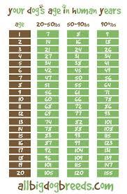 Alaskan Malamute Weight Chart Alaskan Malamute Puppy Weight Chart Dogs Breeds And