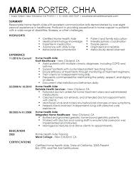 Physical Therapy Aide Resume Objective Pleasing School Principal