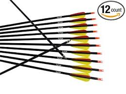 Carbon Arrows 12pcs For Recurve Compound Bow 28 To 32 Inch