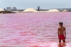Resultado de imagen para imagenes de laguna rosa en alicante