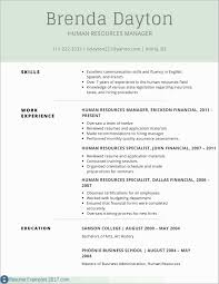 Example Of Profile Section Of Resume Professional Profile Resume