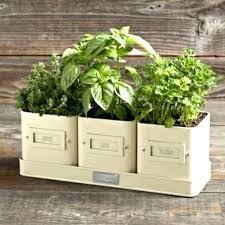 kitchen herb planter herb garden planter ideas windowsill herb planter windowsill herb garden kit transitional indoor
