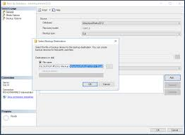 set the file name with the bak extension in microsoft sql server management studio