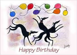 Image result for whippet birthday