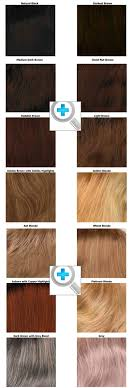 Dream Age Color Chart Original Luxury Wig American Wig Factory At Hairline