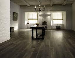 Amtico Kitchen Flooring Flooring Ideas Modern Kitchen With Dark Kitchen Cabinet And