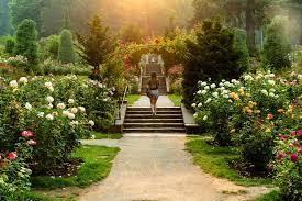 international rose test garden cole saladino thrillist