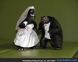 Modern Concept Fun Wedding Cake Toppers With 33218 Saphosinfo