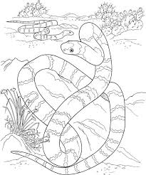 Small Picture cute cartoon snake coloring page the royal python king snake