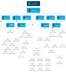 Organizational Chart Seagull Hvac