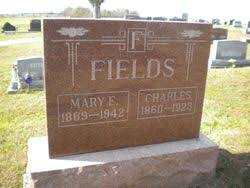 Mary Ellen Alexander Fields (1869-1942) - Find A Grave Memorial