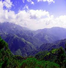 The Blue Mountains of Jamaica