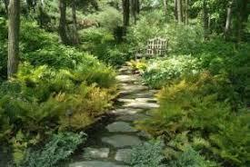Small Picture Woodland Garden Design Garden Ideas Garden Design