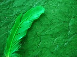 Gorgeous Green Beautiful Green Feather On Green Textured
