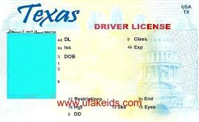 Fake Lavirgen State – License co Blank Template Id