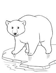Small Picture Free Polar Bear Worksheet for a Winter theme unit winter
