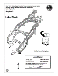 Lake Placid Nys Dept Of Environmental Conservation