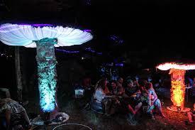 big dub festival