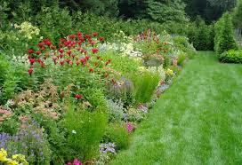 expert perennial garden ideas round design consideration for