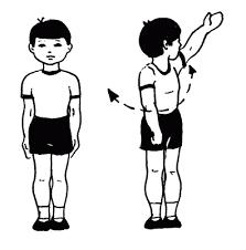 Физическое воспитания детей в школе и дома Физкультура на  физическое воспитание в школе и доиа
