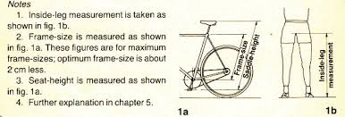 Cruiser Bike Size Chart Bike 101 How To Find The Right Size Bike Simply Bike