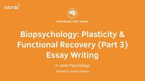 revision webinar biopsychology plasticity functional recovery revision webinar biopsychology plasticity functional recovery part 3 essay writing