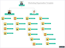 Marketing Organization Structure Is Made Up Of A Group Of