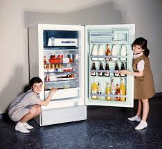 What Did People Do Before <b>Refrigerators</b>? <b>Food Preservation</b> Back ...