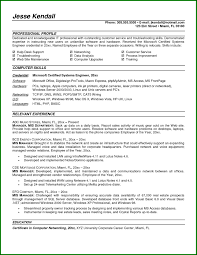Mis Executive Resume Format Resume Resume Examples