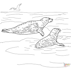 Seals Coloring Pages Us Navy Seal Page U S Pinterest 1056816