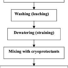 Flow Diagram Of Surimi Processing Download Scientific Diagram
