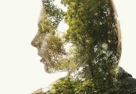 Значение природы в жизни человека зависимость человека от природы