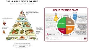 Daily Food Chart For Good Health What Successful Call Center Managers Eat For Breakfast Fonolo