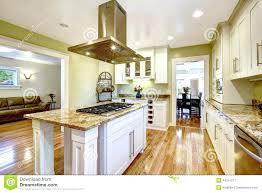 Built In Kitchen Islands Close Up Custom Built Kitchen Kitchen