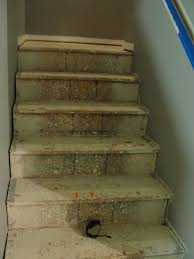Redo Stairs Cheap For Instant Beauty Add Elbow Grease Those Pesky Osb Stairs