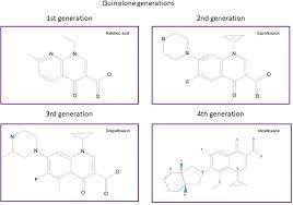 mechanisms of resistance to quinolones