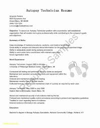 Financial Analyst Skills Resume Detail Finance Resume Template Word