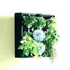 wall mounted plants wall hung planters mount planter hanging mounted plant holders medium wall mounted planters