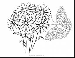 marvelous butterfly and flower coloring pages with butterflies ...