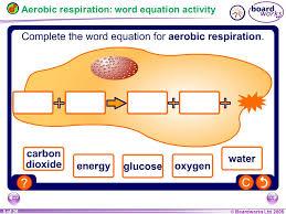 5 aerobic respiration word equation activity ks3 biology 8b respiration ppt